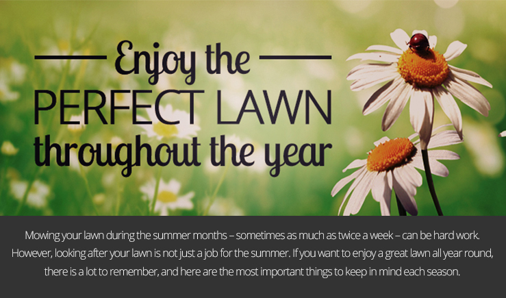 Enjoy the Perfect Lawn Throughout the Year