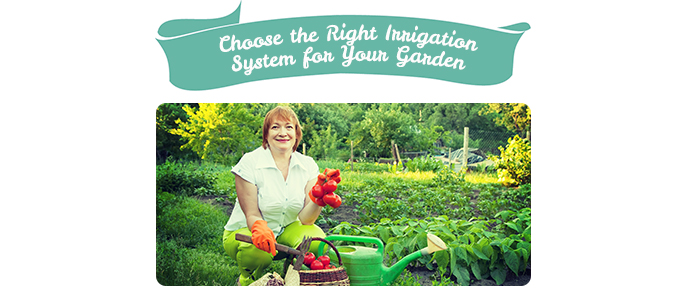Choose the Right Irrigation System for Your Garden