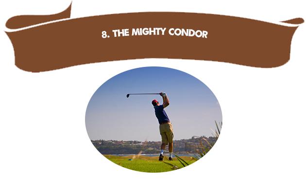8. The Mighty Condor